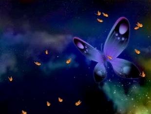 دانلود اسکرین سیور Happy Butterfly Screensaver