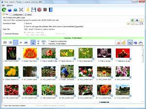 دانلود دسته جمعی تصاویر Bulk Image Downloader 4.20.0.1