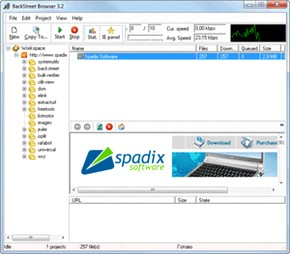 مرور آفلاین Spadix BackStreet Browser